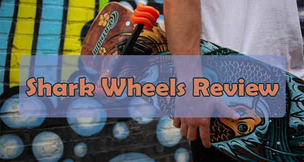 shark wheels review